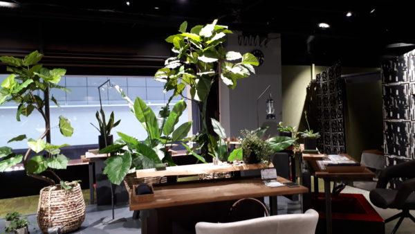 羽田空港にある足湯カフェ&ボディケアラック店内の写真